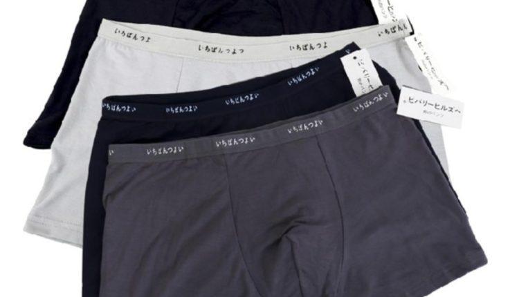 c38c14816d740 Types of Men's underwear/Brief styles - Textile School